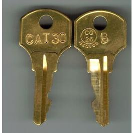 Interlogix CAT30KEY Replacement Keys