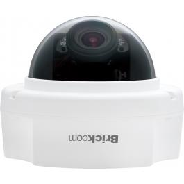 FD-302Np-V5, Brickcom Dome Camera