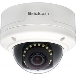 FD-202Ne-V6, Brickcom Dome Camera