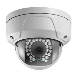 CT-NC303-TD, Cantek Dome Camera
