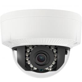 CTP-TLF14NV, Cantek-Plus Dome Camera