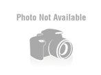 ICC IC107FN4GY 4-Port NEMA Furniture Faceplate Gray
