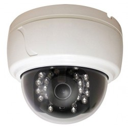 Speco CLED30D1W 600TVL Day/Night IR Dome Camera, 2.8-12mm