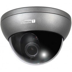Speco HT7246T Intensifier T HD-TVI 1080p Outdoor Dome Camera, Dark Grey