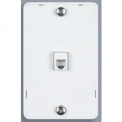 DataComm 20-1612 Color Rite Phone Plate Quick Mount - White