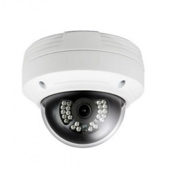 Cantek-Plus CTP-TLF19NV 2Mp Outdoor IR Network Vandal Dome