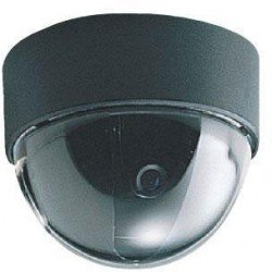 Everfocus ED220 Color Mini Dome Camera