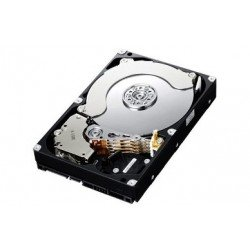 Hikvision HK-HDD2T-E Enterprise Grade SATA HDD for RAID NVRs, 2TB