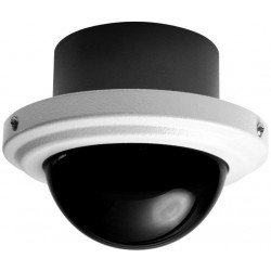 Pelco IS50-CHV10F Camclosure-2 Outdoor Rugged Mini Dome Camera w/Smoked Bubble, Flush, NTSC