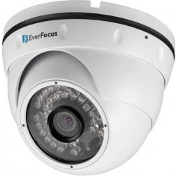EverFocus EBN268-3 2 Megapixel Outdoor Ball IR & WDR Network Camera, 3.6mm