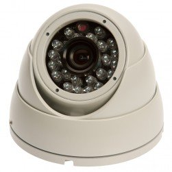 CTCA-589, Cantek Analog Dome Camera