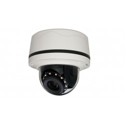 Pelco S-IMP221-1RS-P 2 Megapixel Network Outdoor IR Dome Camera, 3-10.5mm Lens