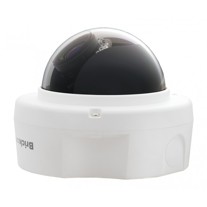 FD-300Np-V5, Brickcom Dome Camera