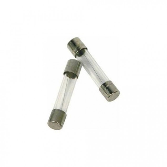 FUSE2, Altronix Glass Fuse (100 pack)